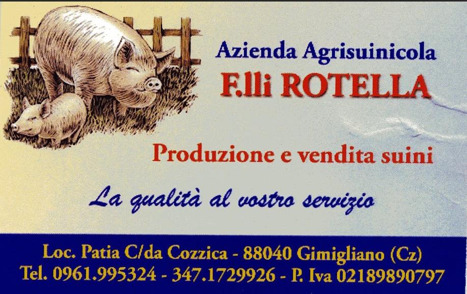 http://iniziativagimigliano.com/domain/wp-content/uploads/2017/07/50-f.lli-rotella.png